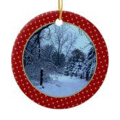 Add Your Picture Ornament ornament