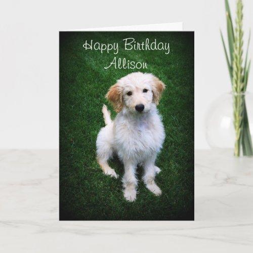 Allison Happy Birthday Golden Doodle Puppy zazzle_card