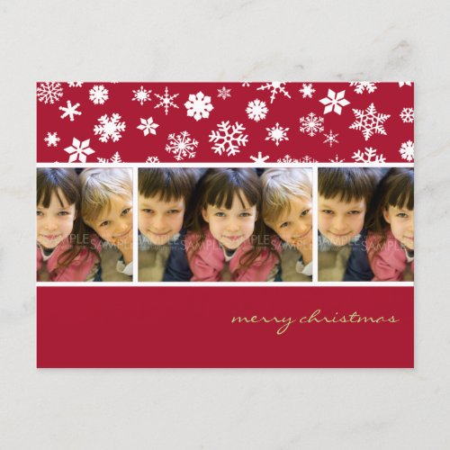 Amaryllis Snowflakes :: Christmas Photo Postcard postcard