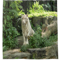 Amazing Great White Tiger Shower Curtain