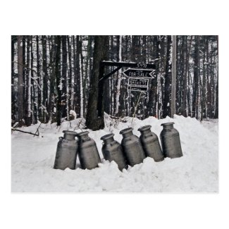 Amish Milk Cans-Postcard
