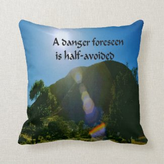An ancient Ameridan Indian Proverb Pillow