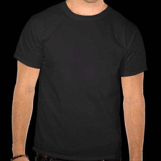 Analytical Paradox t-shirts