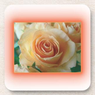 Apricot Rose Blur Beverage Coaster