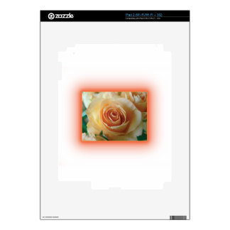 Apricot Rose Blur Skins For The iPad 2