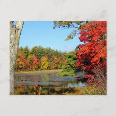 Autumn Lakeside postcard