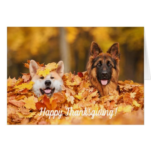 Autumn Leaves & Dogs | Thanksgiving Cards