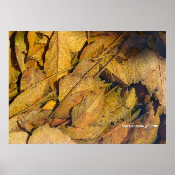 Autumn Leaves in a Rain Puddle print