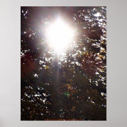 Autumn Sun Rays # 17 print