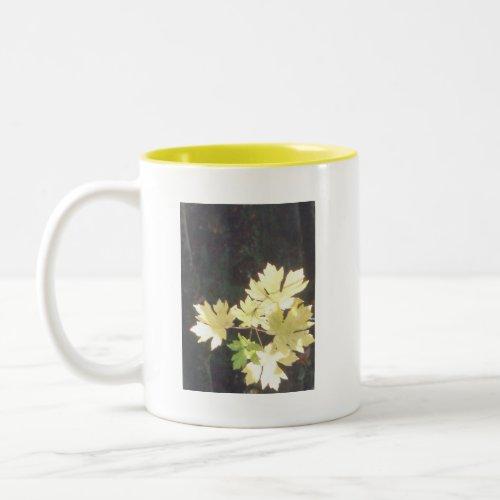 Autumn Sun Rays #34 mug