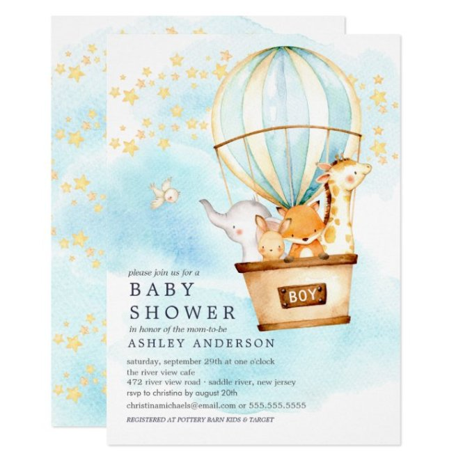 Baby Animals Hot Air Balloon Ride