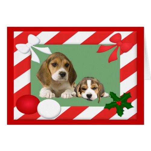 Beagle Christmas Card Frame