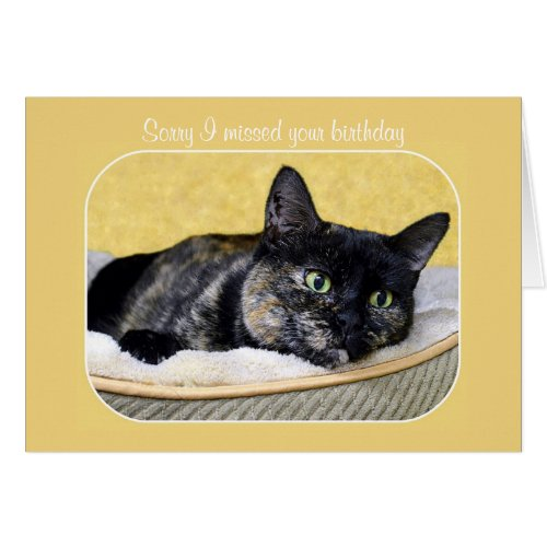 Belated Birthday Tortoiseshell Cat Greeting Cards