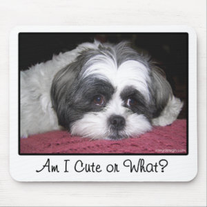 Belle The Shih Tzu Dog Mouse Pad