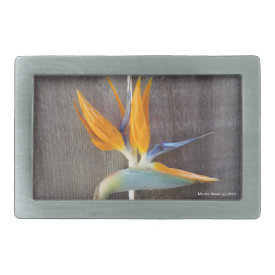 Bird of Paradise - Belt Buckle