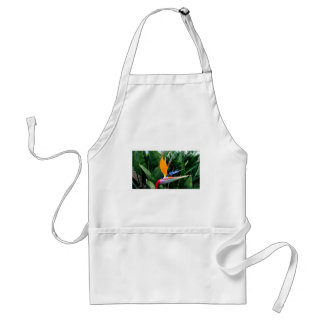 Bird Of Paradise Flower - California Aprons