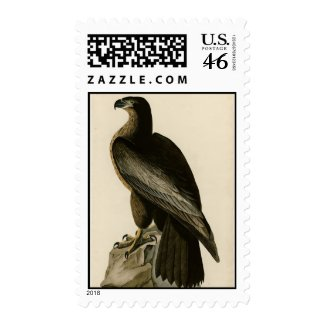 Bird of Washington stamp