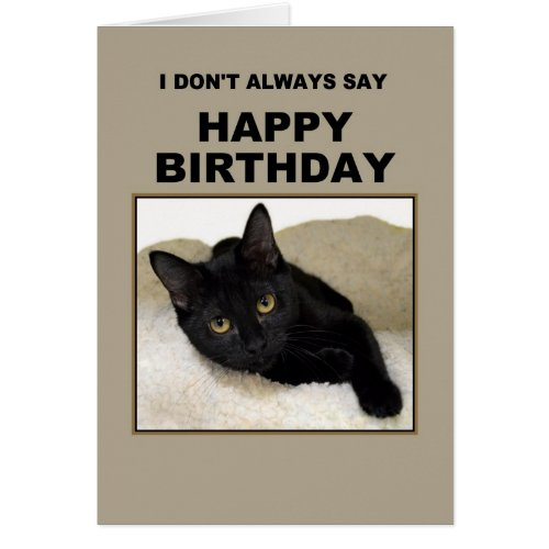 Black Cat Birthday Humor Cards