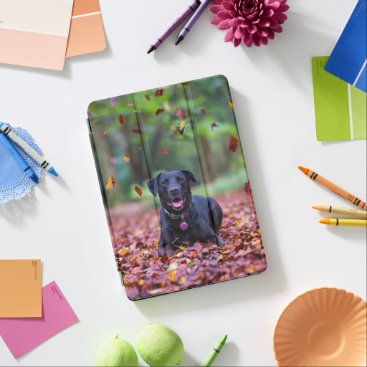 Black Labrador In Fall Leaves iPad Pro Cover
