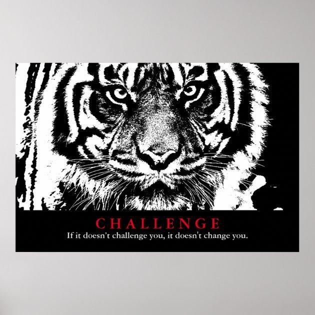 Quote Inspirational Motivational Success Animals Tiger