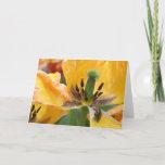 Yellow Tulips Blank Greeting Card