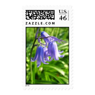Blue bells zazzle_stamp