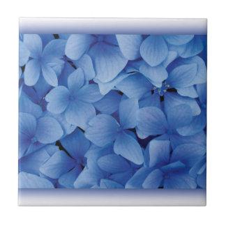 Blue Hydrangea Blossoms Ceramic Tile