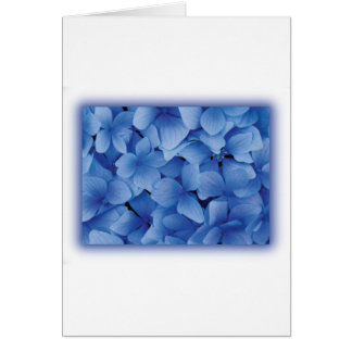 Blue Hydrangea Blossoms Greeting Cards