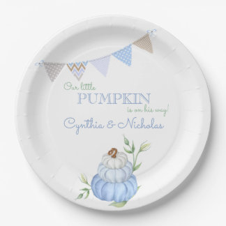 Paper Plate (Baby Boy)
