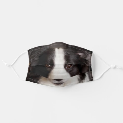 Border collie adult cloth face mask