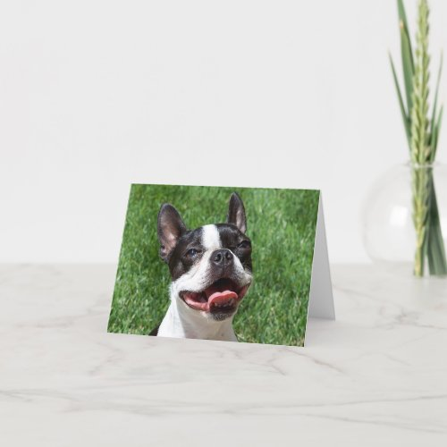 Boston Terrier Puppy Dog Notecard