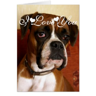 Boxer Dog Happy I Love You Greeting Card
