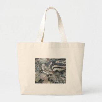 Bull snake (Pituophis catenifer sayi) Tote Bags