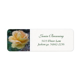 Buttercream Rose Address Label