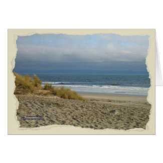 California Coastline Card Series (5)