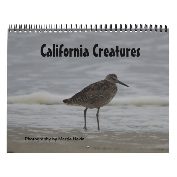 California Creatures Calendar (Sept-Aug)