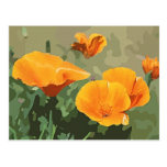 ❤️ Sweet California Poppy Postcard