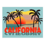 California Souvenir Postcard