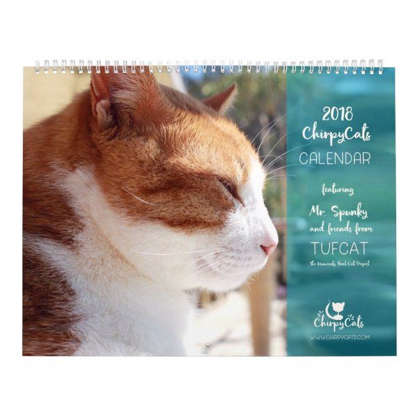 Cat Calendar 2018 - Chirpy Cats