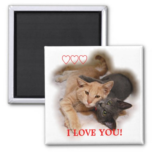 Cat Couple I Love You Magnet magnet