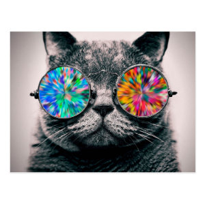 Cat wearing psychedelic glasses postcard