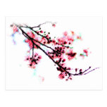 Cherry Blossom Painting postcards