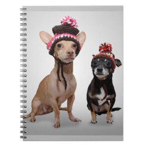 Chihuahua Dogs With Hats Photo Spiral Notebooks