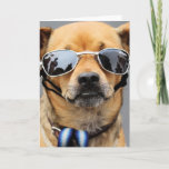 Chihuahua - Hello Ladies! Card