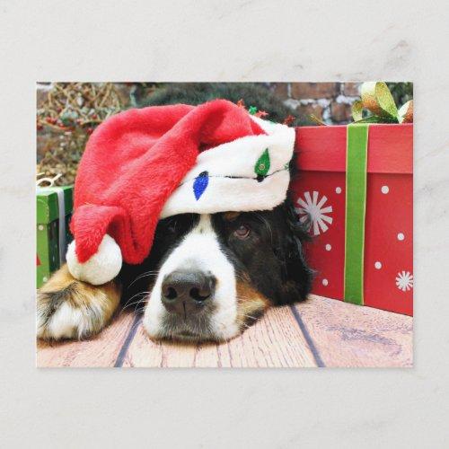 Christmas - Bernese Mountain Dog - Mya Holiday Postcard