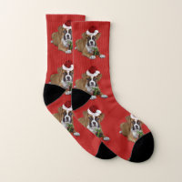 Christmas boxer puppy dog socks