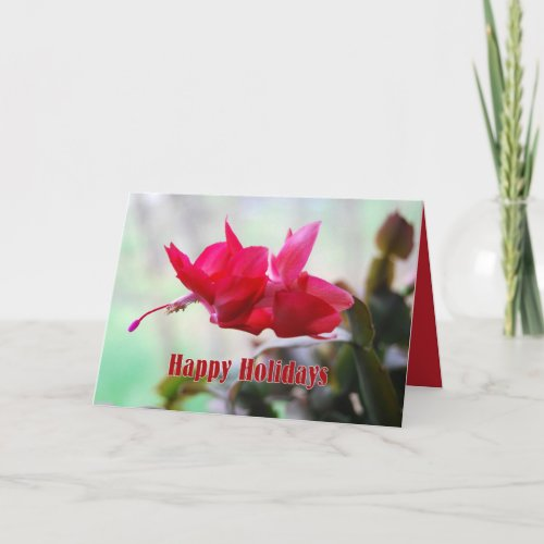 Christmas Cactus Happy Holidays card
