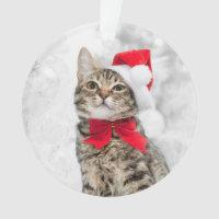 Christmas Cat At Red Santa's Hat Near Christmas Ornament