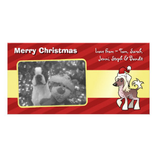 Chinese Crested Christmas Cards Zazzle