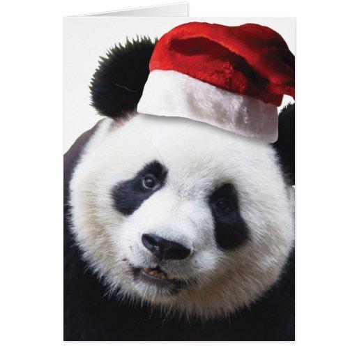 Christmas Panda Bear Card Zazzle